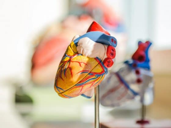 7 Habits You Can Change to Prevent Cardiovascular Diseases