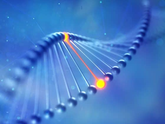 A Time to Reboot: Epigenetic Transcendence